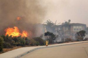 wildfire San Diego, Cal. 5-14-20`2 burn homes